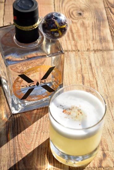 x gin 3