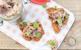 Rillettes van eend - Crackers met pompoenpitten