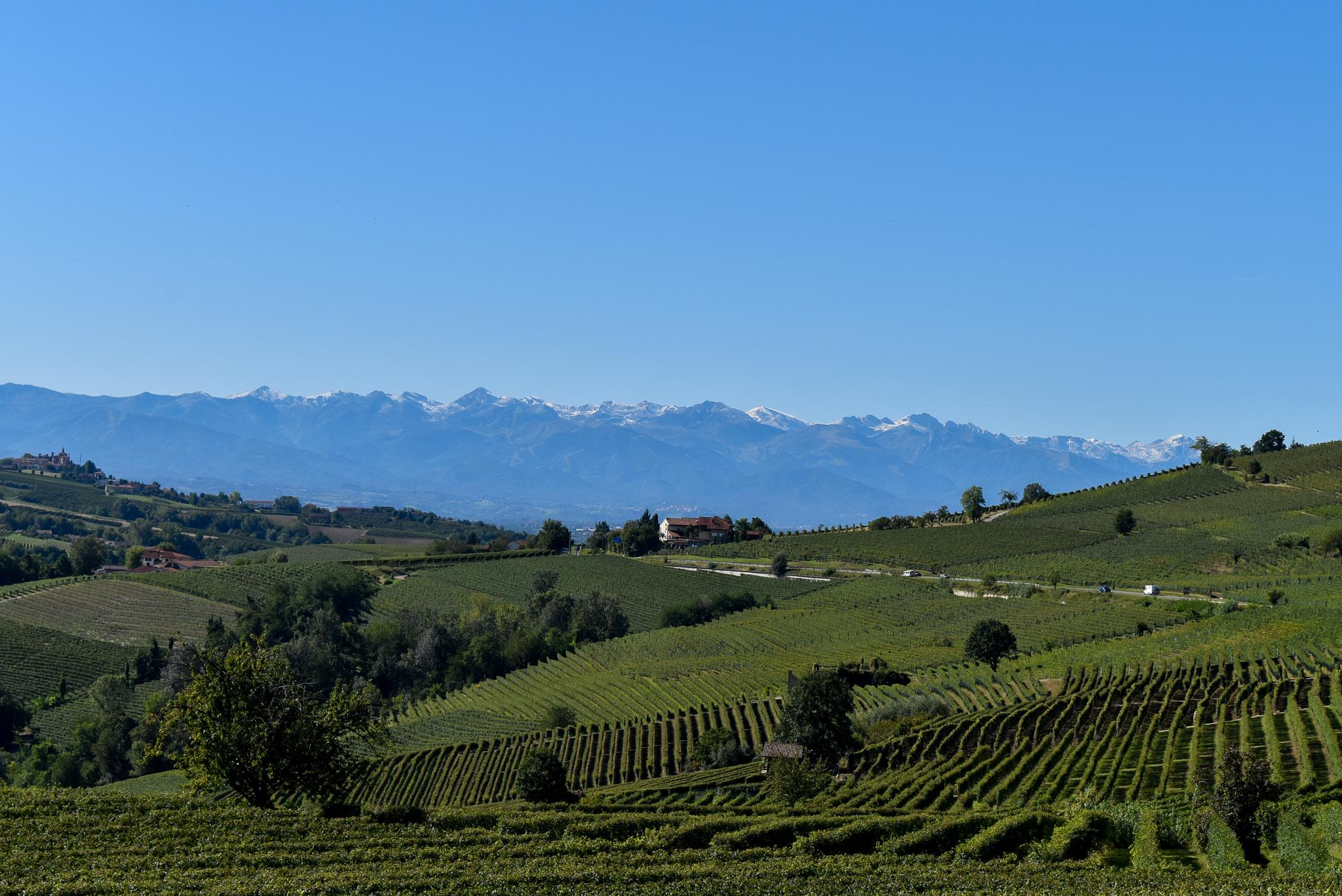 Ons hart verloren in Piemonte - La Morra