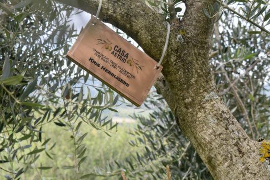 Adopt a tree - Casa Astrid