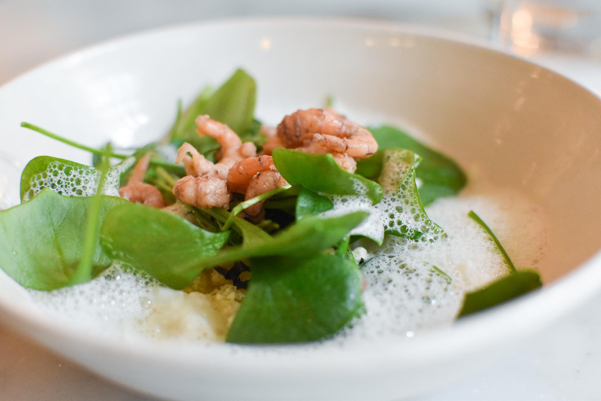 2012 - Gepocheerd hoeve-ei, handgepelde Nieuwpoortse garnalen. bloemkool met dragon en gember, couscous van rauwe bloemkool en rapensteel.