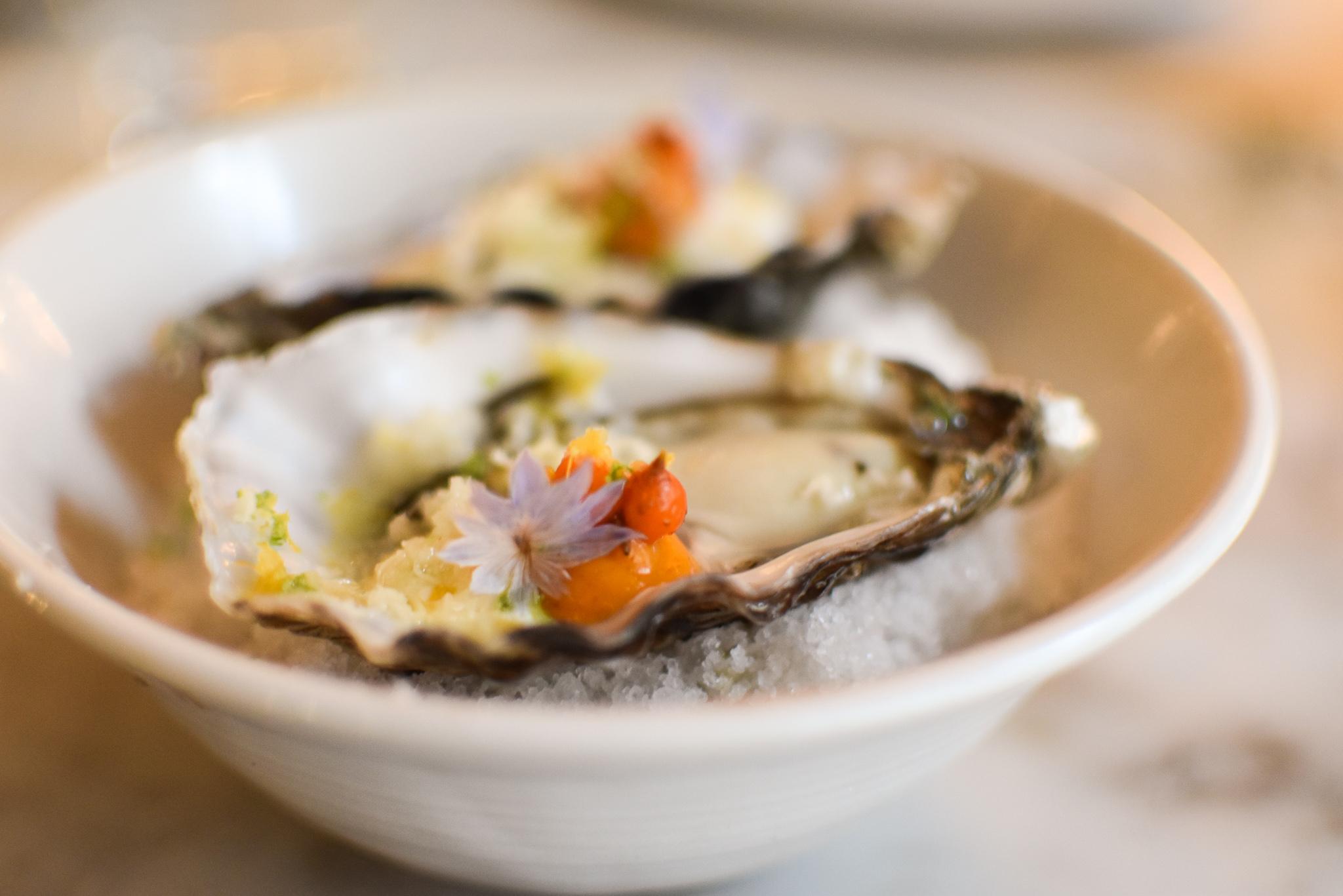 2015 - oester, duindoornbes, mierikswortel, zure room en citroen.